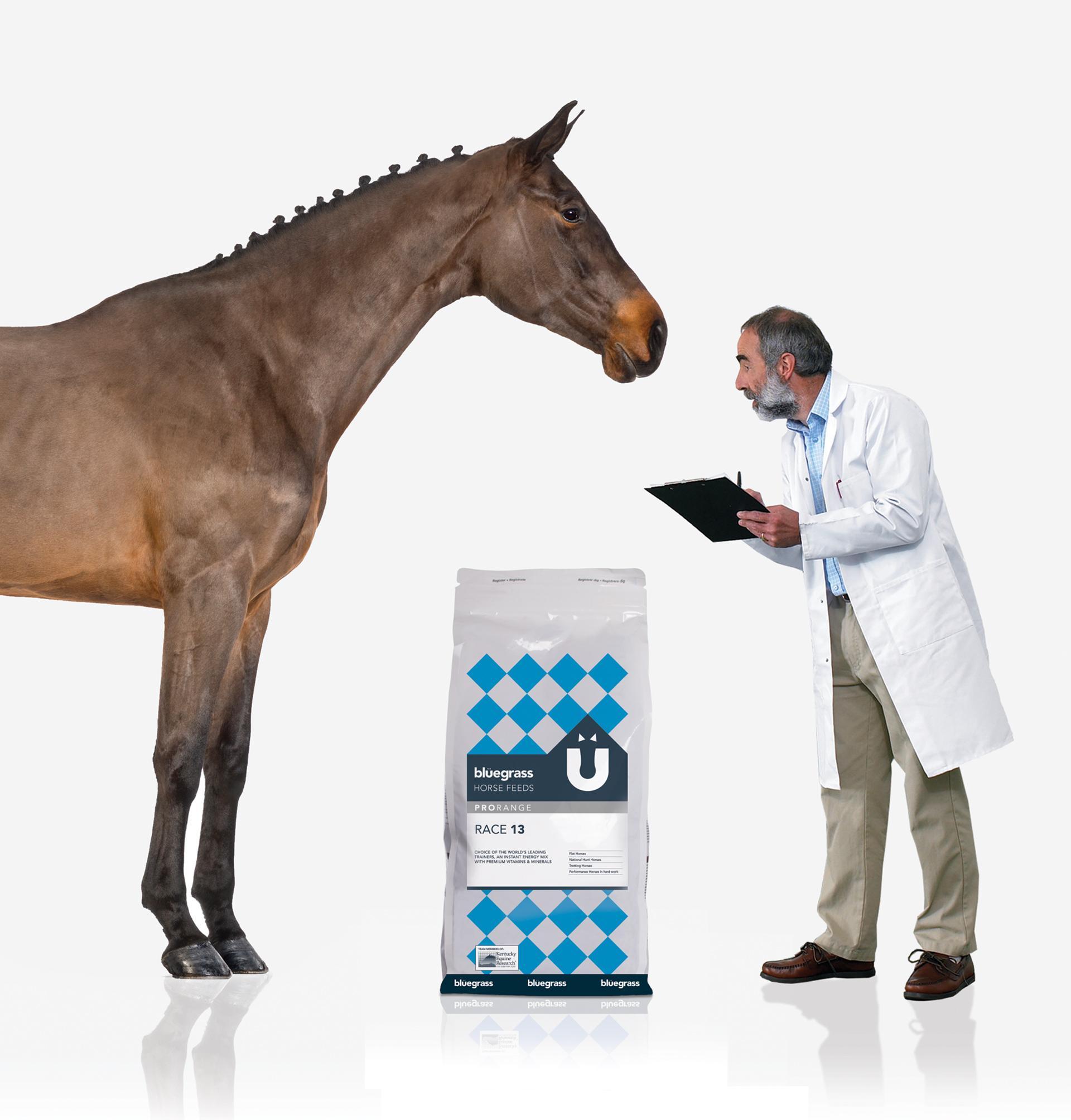 Bluegrass Horse Feeds